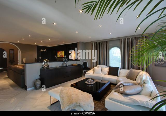 Ledercouch in moderne Wohnzimmer Stockbild