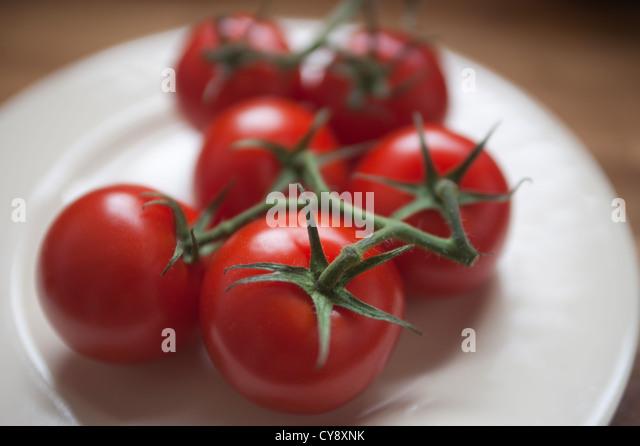 Gruppe von Tomaten auf einem weißen Teller. Tomaten sind immer noch die Rebe Stiele verbunden. Stockbild