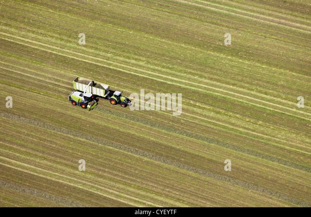 Den Niederlanden, Barneveld. Mähdrescher ernten Rasen um Heu zu produzieren. Luft. Stockbild