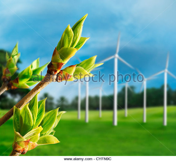 Ökologie-Konzept. Erneuerbare Energie aus Windkraftanlagen. Stockbild