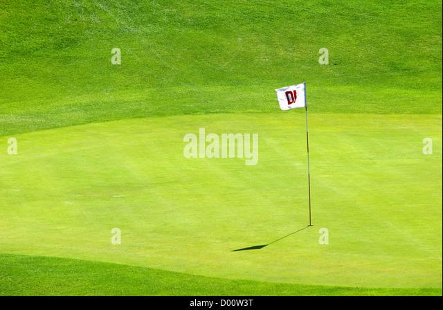 Grün, Golfplatz Stockbild