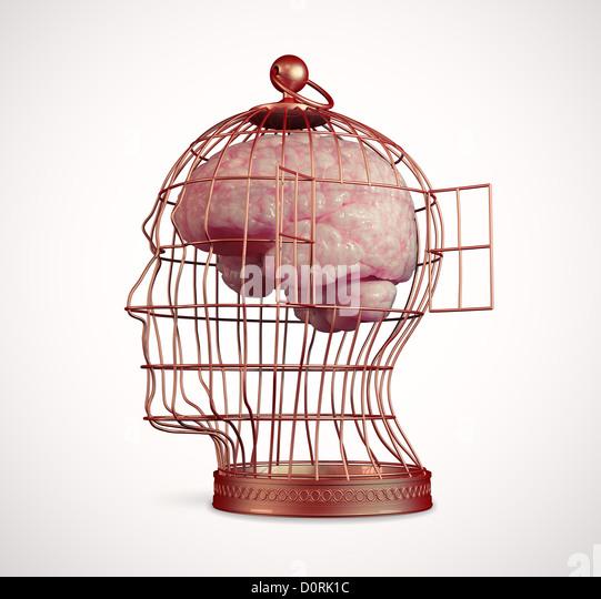 Gehirn in einen Käfig Stockbild