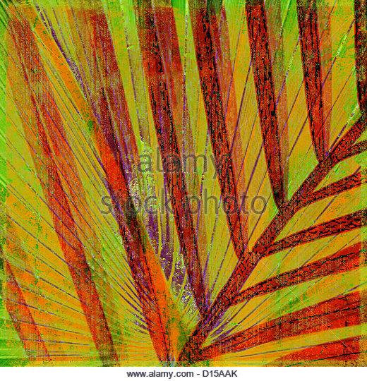 Neugier, Palmwedel (fotografischen Komposition). Stockbild