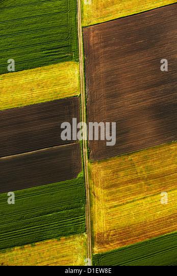 farbige Felder, Süddeutschland, Luftbild Stockbild
