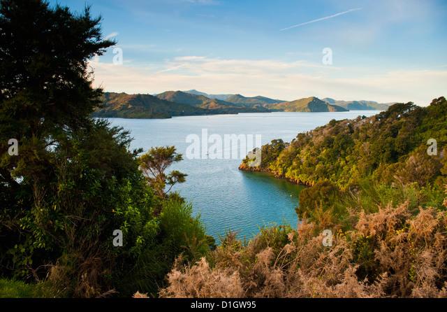 Blick auf einem Segelboot im Queen Charlotte Sound, Südinsel, Neuseeland, Pazifik Stockbild