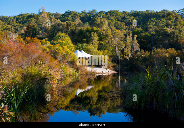 Eisvogel Resort, Fraser Island, UNESCO World Heritage Site, Queensland, Australien, Pazifik Stockbild