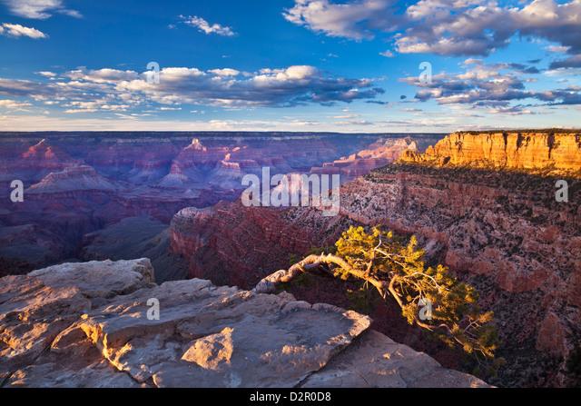 Pipe Creek Vista Point Overlook, South Rim, Grand Canyon National Park, Arizona, USA Stockbild
