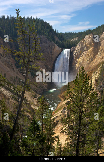 Blick auf Lower Falls von Red Rock Point, Grand Canyon of the Yellowstone River, Yellowstone-Nationalpark, Wyoming, Stockbild