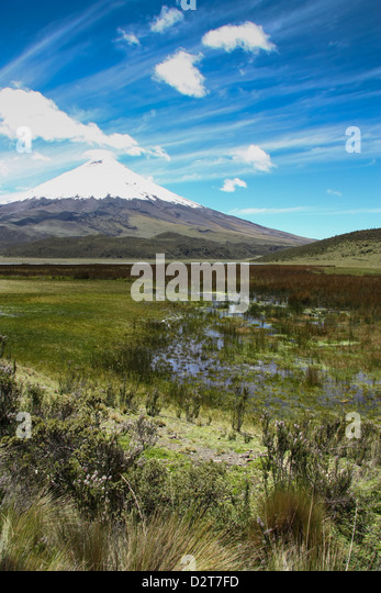 Der Cotopaxi Vulkan mit einem klaren, blauen Himmel, Ecuador. Stockbild