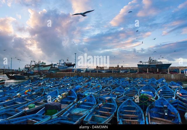 Vögel fliegen über Boote im städtischen Hafen Stockbild