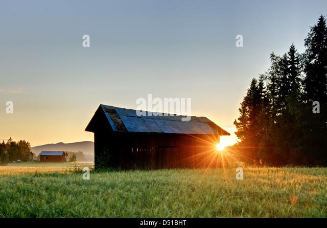 Sonnenuntergang hinter der Scheune in Feld, Bollnäs, Hälsingland, Schweden, Europa Stockbild