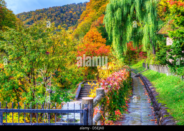 saisonale Herbstlaub in Jozankei, Japan. Stockbild