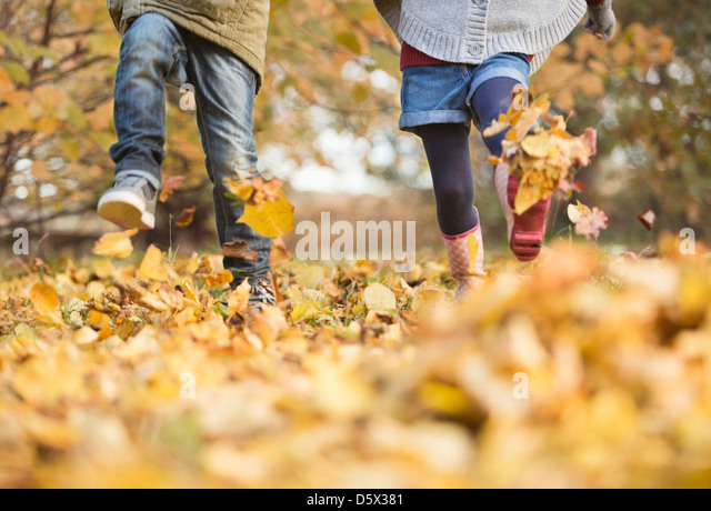 Kinder Wandern im Herbstlaub - Stock-Bilder