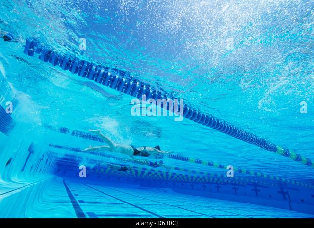 Schwimmer racing zusammen im Schwimmbad Stockbild