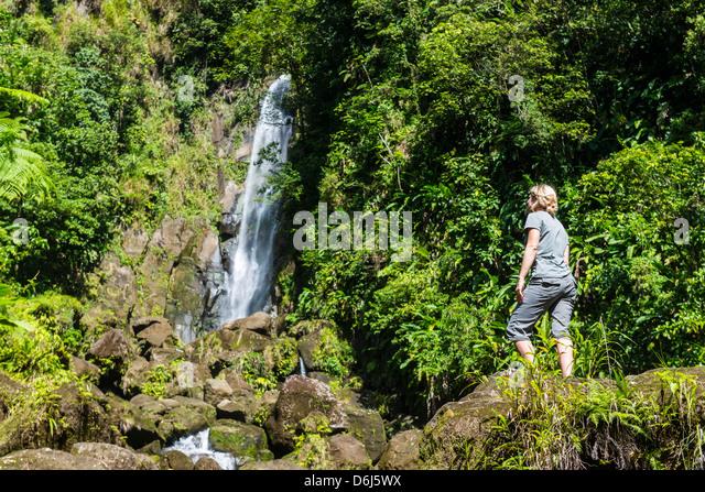 Touristen auf der Suche bei Trafalgar Wasserfälle, Morne Trois Pitons National Park, UNESCO Website, Dominica, Stockbild