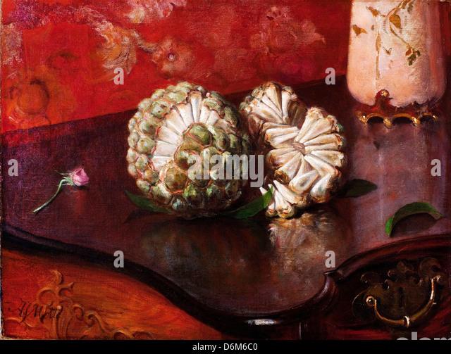 Agostinho da Motta, Flaschenbaum. des 19. Jahrhunderts. Öl auf Leinwand. Pinacoteca Estado de São Paulo, Stockbild