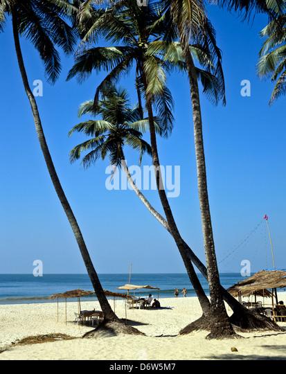 8411. Colva Beach, Goa, Indien Stockbild