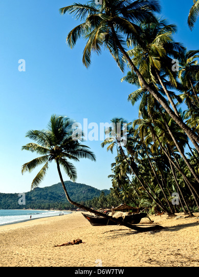 8461. Palolem Beach, Goa, Indien Stockbild