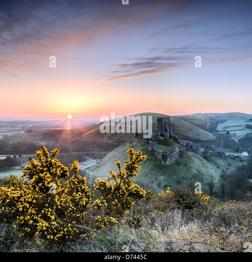 Sonnenaufgang mit Blick auf die Ruinen von Corfe Castle auf der Isle of Purpeck in Dorset. Stockbild