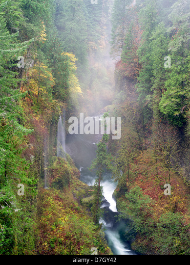 Saisonalen Wasserfälle (unbenannt) in Eagle Creek. Columbia River Gorge National Scenic Bereich, Oregon Stockbild