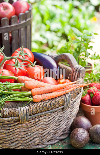 Ein Korb gefüllt mit frischem Gemüse, Früchten und Kräutern umgeben. Stockbild