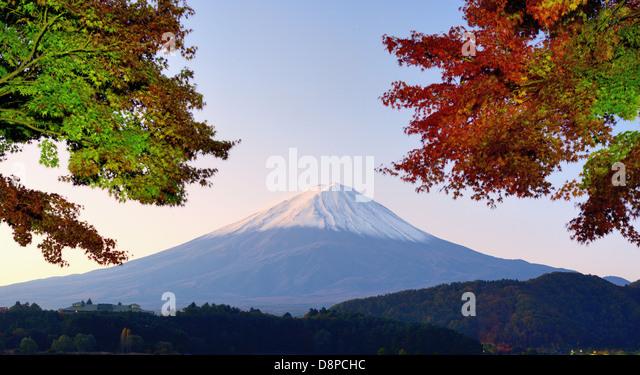 Panorama von Mt. Fuji mit Herbstfarben. Stockbild