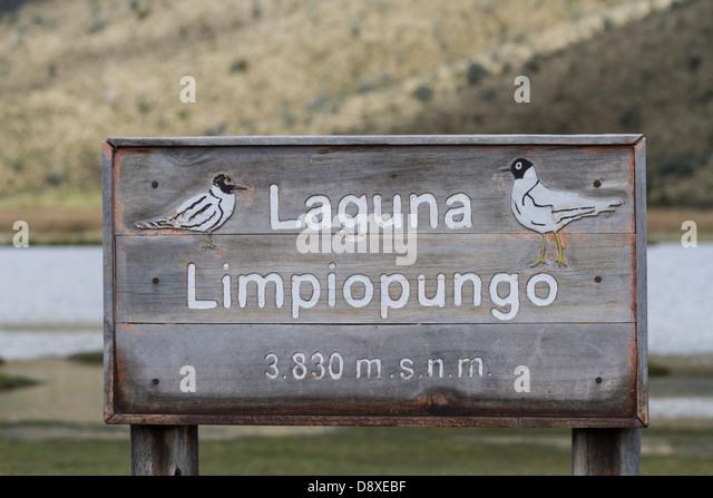 Laguna Limpiopungo, Zeichen, Cotopaxi Nationalpark Cotopaxi, Ecuador Stockbild