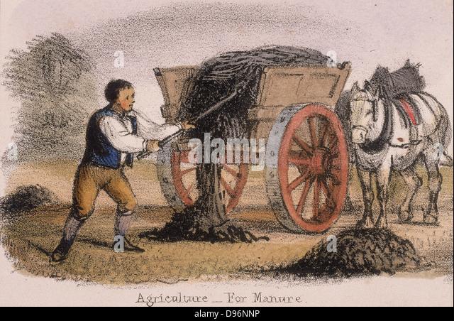 Der Gülle-Wagen. Von 'Grafischen Abbildungen von Tieren und deren Utility für den Menschen' London, - Stock-Bilder