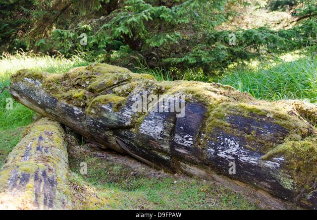 Skedans (Koona Llnagaay) (Koona Llnaagay) antike Stätte in Haida Gwaii (Queen Charlotte Islands), Britisch Stockbild
