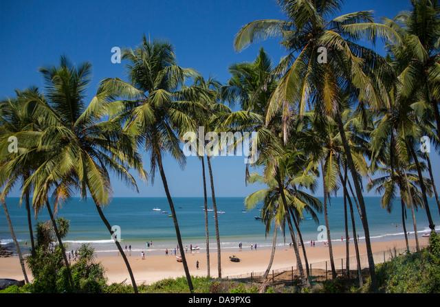 Indien, Süd-Indien, Asien, Goa, Sinquerim Beach, Sinquerim, Strand, blau, Palme, Palmen Bäume, Tourismus, Stockbild