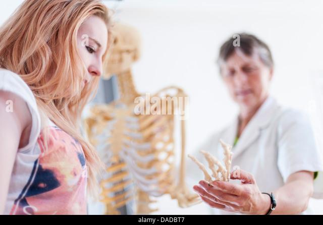 Frau zeigt Teenager Mittelhandknochen auf anatomische Modell Stockbild
