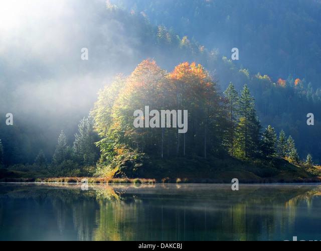 Morgennebel am Weitsee in der Nähe von Reit Im Winkel, Herbststimmung, Oberbayern, Oberbayern, Bayern, Deutschland Stockbild