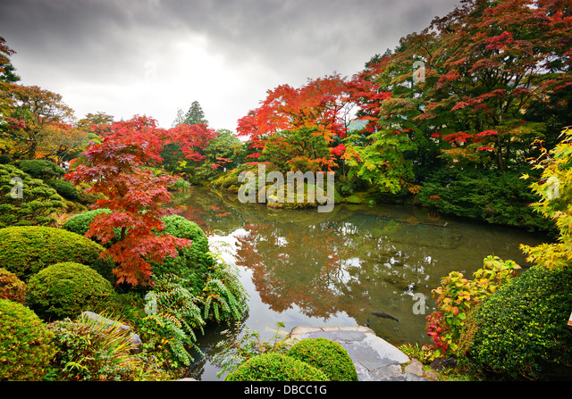 Herbstlaub in Nikko, Japan. Stockbild