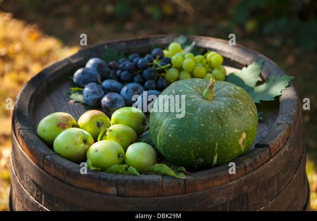 Verschiedene Früchte auf hölzernen Faß, Kroatien, Slawonien, Europa Stockbild