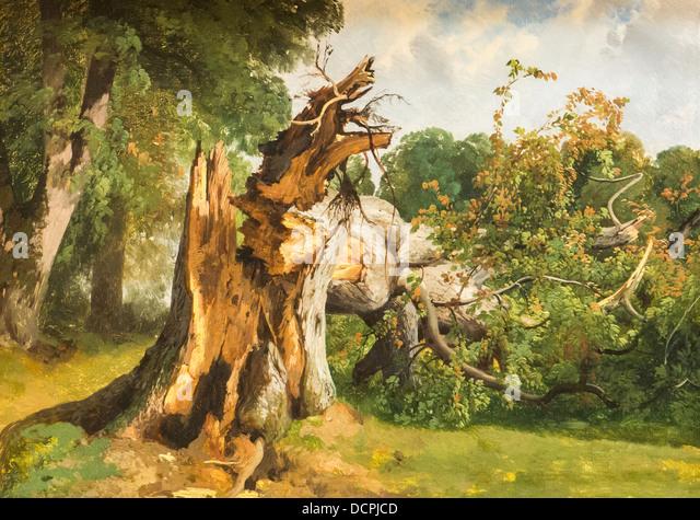 19. Jahrhundert - Broken Tree - Alexandre Calame Philippe Sauvan-Magnet / aktive Museum Stockbild