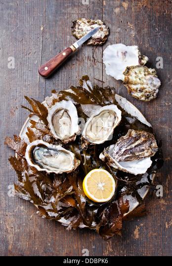 Öffnen Sie Auster Super Speciale mit Algen und Eis auf hölzernen Hintergrund Stockbild