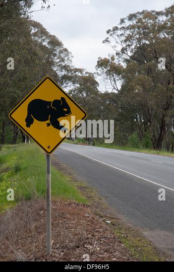 Australian Road-Trip: Koala Gefahr Warnzeichen neben einer Autobahn in Victoria Stockbild