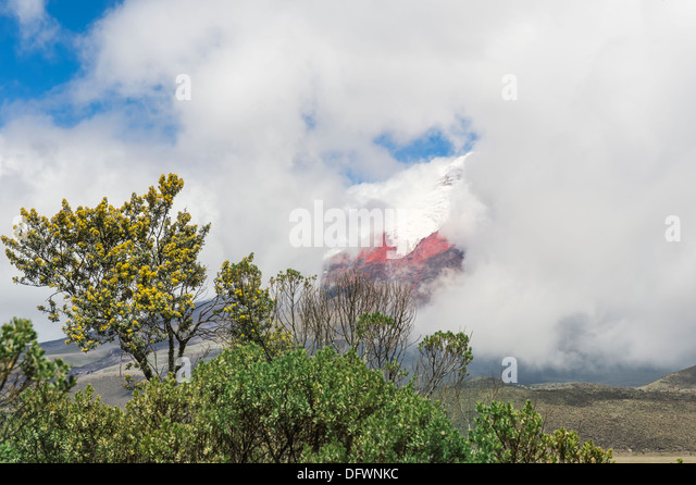 Cotopaxi-Nationalpark, Provinz Cotopaxi in Ecuador Stockbild