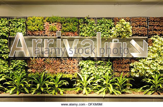 Singapur - Changi Airport. Wegbeschreibung für die Anreise an den Gepäckbändern, eine lebendige Mauer Stockbild