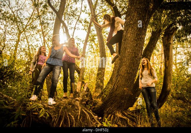 Fünf junge Frauen, die Wälder zu erkunden Stockbild