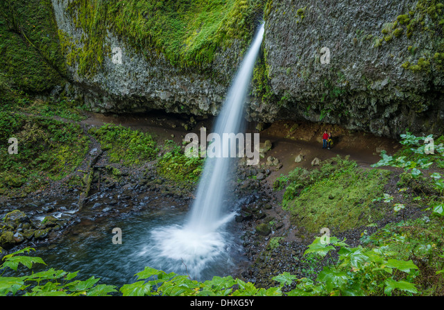 Wanderer am Wanderweg hinter Pferdeschwanz fällt (aka Upper Schachtelhalm Falls), Columbia River Gorge National Stockbild