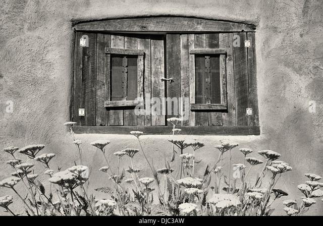 Schafgarbe Blumen im Garten mit historischen Fenster in Adobe-Haus. Taos, New Mexiko. Stockbild