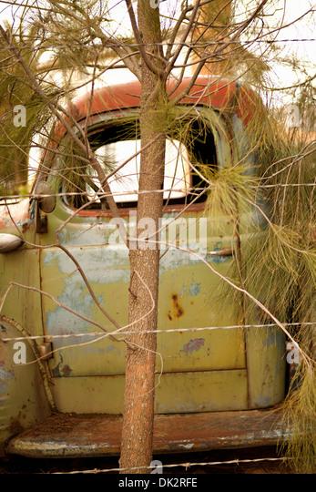 Verrosteten grünen verlassenen LKW hinter Baum Stockbild