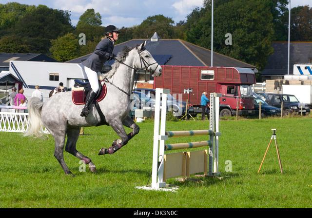 Pferd springen Eventing Kreuz Land Pferde Sport Sprung zeigen ländlichen Bauernhof Feld grau Gymkhana Godshill Stockbild