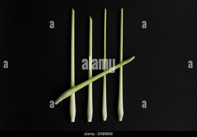 Eine fünf bar Tor, Nr. 5, Nr. 5, 5 Stück Zitronengras auf einem schwarzen Hintergrund. Stockbild