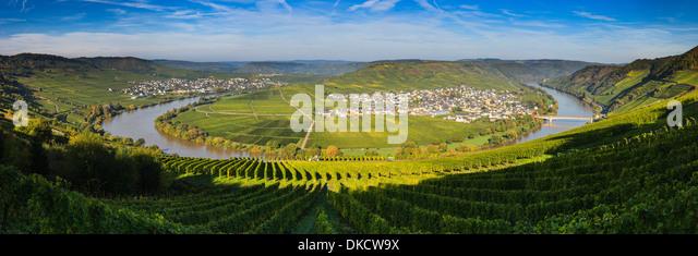 Biegen Sie in den Fluss Mosel mit den Dörfern Leiwen und Trittenheim, Westdeutschland. Stockbild