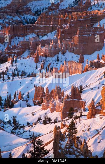 die Hoodoos im Winter, Bryce Canyon, Utah, USA Stockbild