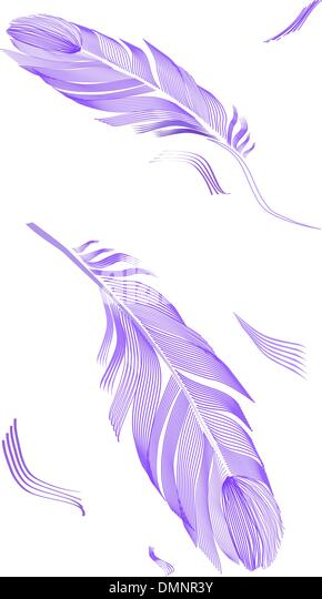 Zeichnung Vogelfeder Stockbild