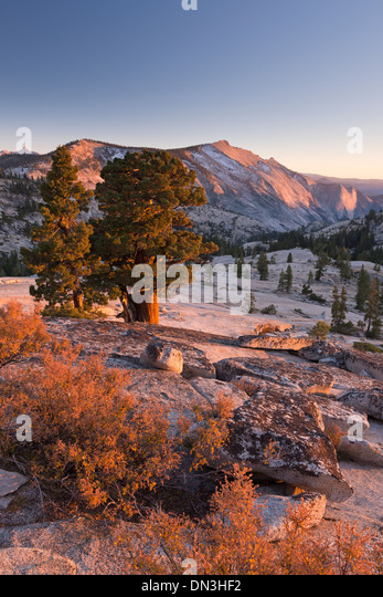 Wolken-Rest-Berg in der High Sierra, angesehen von oben Olmstead Punkt, Yosemite-Nationalpark, Kalifornien, USA. Stockbild