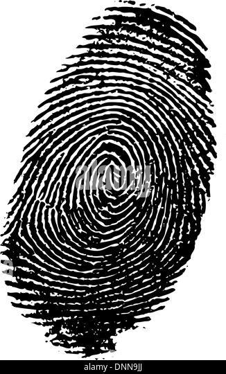 Detaillierten Fingerabdruck Stockbild